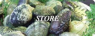 株式会社マルゴ水産